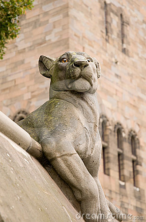 Animal Wall Lioness