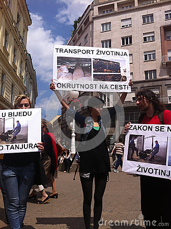 Animal welfare demonstration Editorial Stock Image