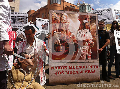 Animal welfare demonstration Editorial Stock Photo