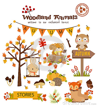 Free Animal Woodland Autumn Vector Set Royalty Free Stock Photography - 49625747
