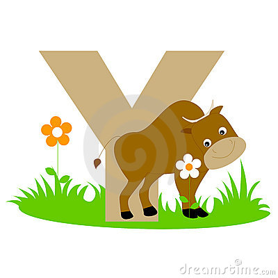 Animal y d alphabet