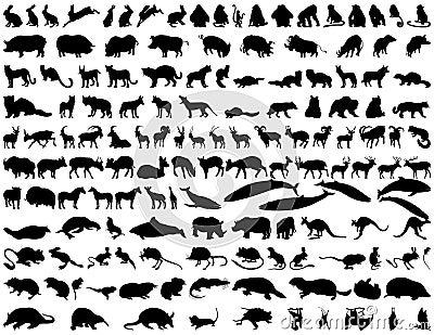 Animales del vector