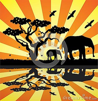 Animals in africa