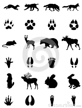 Free Animals And Its Traces Siluets Stock Photo - 35812470