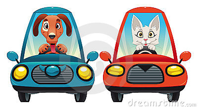 Animals in the car: Dog and Cat