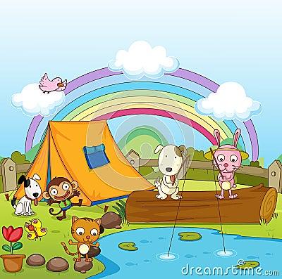 Animals fishing