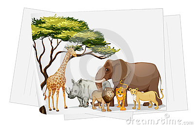 Animals in jungle on paper