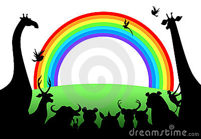 Animals looking rainbow