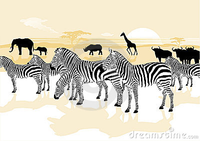 Animals in the savannah