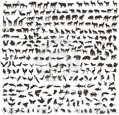 Free Animals Silhouettes Royalty Free Stock Image - 13357716
