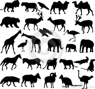 Free Animals Silhouettes Collection Royalty Free Stock Photography - 19420677