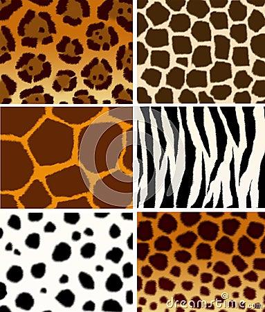 Animals skins  textures