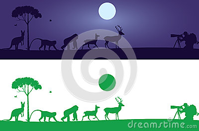 Animals Wall Decal
