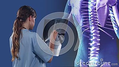 Animazione di un medico che tiene una scansione a raggi X su un modello di corpo umano 3D che ruota su sfondo blu stock footage
