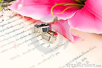 Anéis de casamento na licença de união