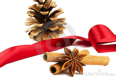 Anise cinnamon conifer cones red ribbon