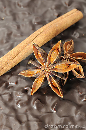 Anise And Cinnamon Stick on Chocolate Cake