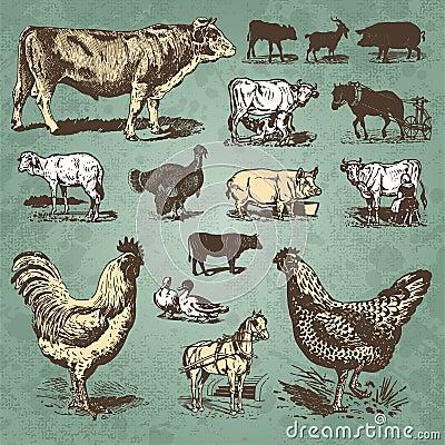 Annata degli animali da allevamento impostata ()