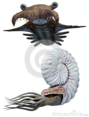 Free Anomalocaris And Ammonite Set Stock Photography - 35617802