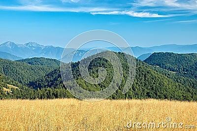 Ansicht der slowakischen Berge