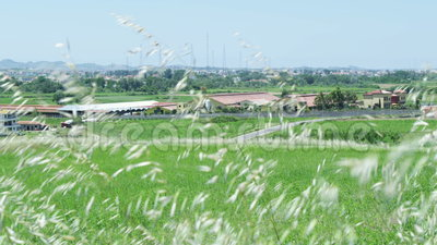 Ansicht des Dorfs von einem Rasen stock footage