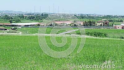 Ansicht des Dorfs von einem Rasen stock video