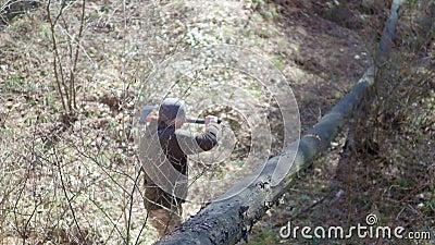 Ansicht von unten, Ernte Starker Mann Holzfäller, der Axt, Axt, Beil in den Baum einsetzt und sie, Beine und Hände zurückbekommt stock video footage