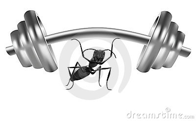 ant power strong insect lift heavy weight