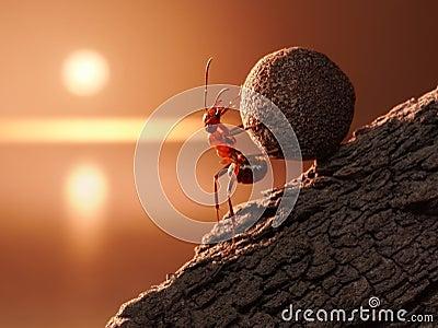 Ant Sisyphus rolls stone uphill on mountain