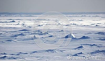 Antarctic snowfields