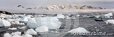 Antarctica - Half Moon Island - Sea Ice Editorial Stock Photo