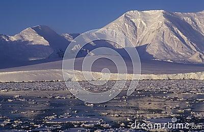 Antarctica shore