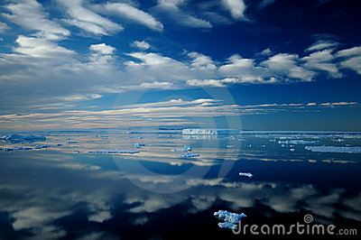 Antarctische spiegel