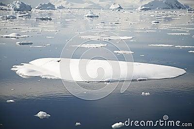 Antarktik-Landschaft