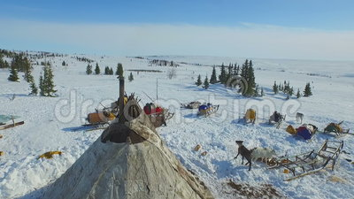 Antenne des Hauses in der Tundra stock video