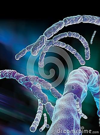 Anthrax Virus