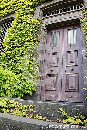 Antique Door Entrance