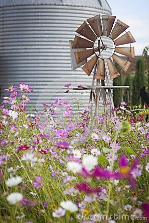 Free Antique Farm Windmill And Silo In A Flower Field Stock Image - 34333691