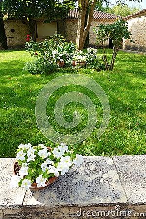 Free Antique Medieval Yellow Stone House, Garden Stock Photo - 31877050