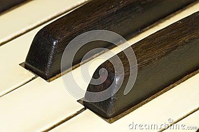 Antique Organ Keys