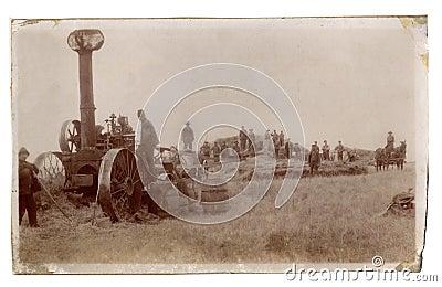 Antique photograph men farming