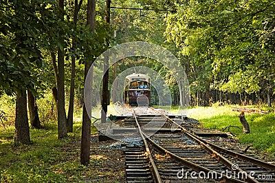 Antique Street Trolley - 7