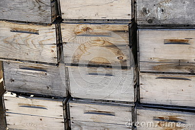 Antique wooden box crates