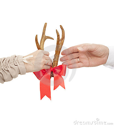 Antlers in gift
