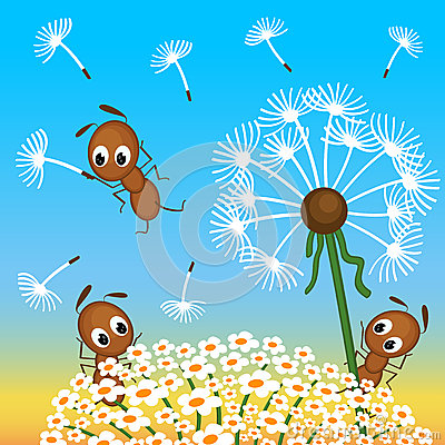 Free Ants And Dandelion Stock Photos - 34815193