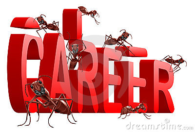 Ants building career jobs planning job search