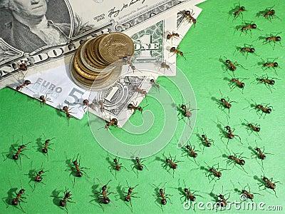 ants financial crisis