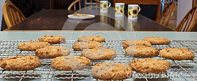 Anzac Biscuits For Morning Tea.