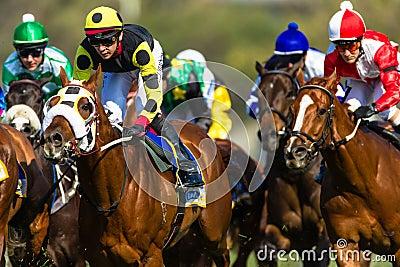 Ação dos jóqueis da corrida de cavalos Imagem Editorial