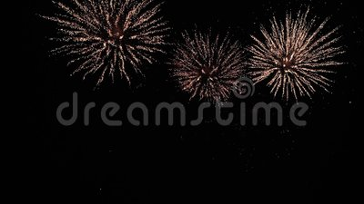 Apenas um plano maravilhoso de longe em uma mostra colorida da noite firework filme